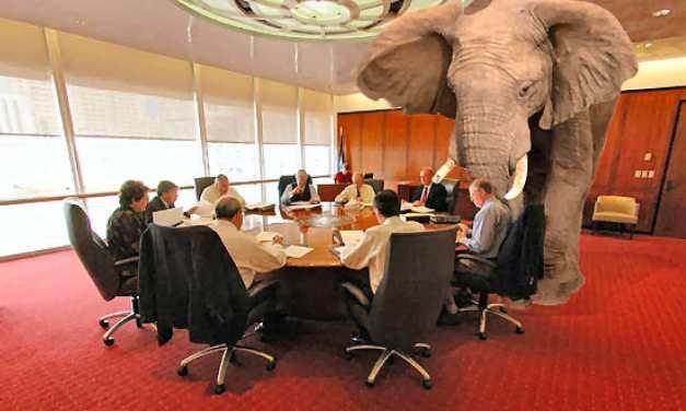 Полът на слона в стаята