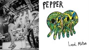 pepper-feature