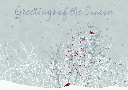H17667 - N7667 - N7667 Touch of Red Holiday Card