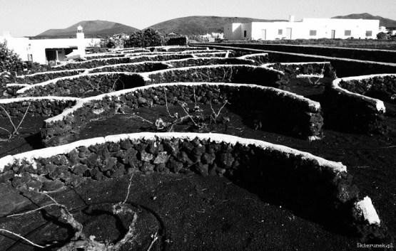 Piąty Kierunek - Lanzarote black and white05