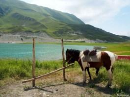 Kiezienoj-Am – jezioro na pokaz07