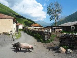 Dolina Sno - Gruzja - Piąty Kierunek13