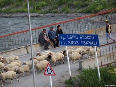 Dolina Sno - Gruzja - Piąty Kierunek15