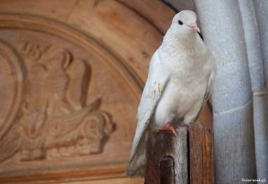 Ghazanchetsots - Katedra Świętego Zbawiciela w Szuszi - Piąty Kierunek07