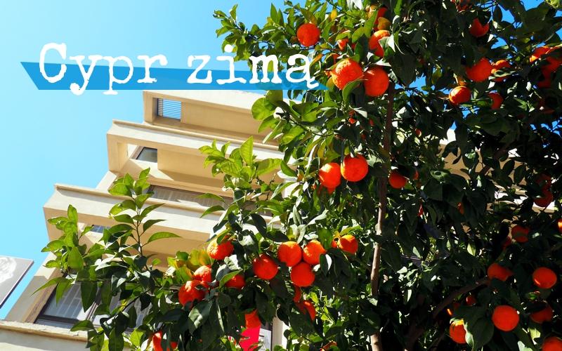 Cypr zimą - Piąty Kierunek