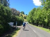 Cycling through Tukituki Road