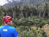 Paul communes with nature: Kaniere trail
