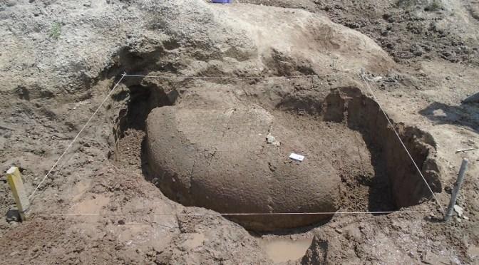 Suipacha: Hallazgo y excavación de un fósil de gliptodonte