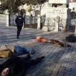 Un suicida del Estado Islámico mata a diez turistas en el centro de Estambul