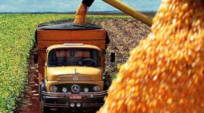 En la Argentina continúa firme la demanda por soja y maíz