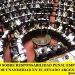 EL PROYECTO SOBRE RESPONSABILIDAD PENAL EMPRESARIA FUE APROBADO POR UNANIMIDAD EN EL SENADO ARGENTINO