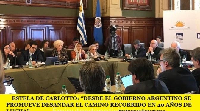 """ESTELA DE CARLOTTO: """"DESDE EL GOBIERNO ARGENTINO SE PROMUEVE DESANDAR EL CAMINO RECORRIDO EN 40 AÑOS DE LUCHA"""""""