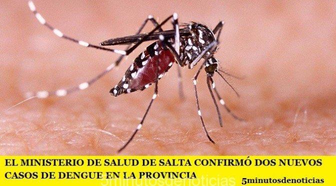 EL MINISTERIO DE SALUD DE SALTA CONFIRMÓ DOS NUEVOS CASOS DE DENGUE EN LA PROVINCIA