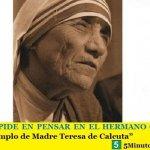 """FRANCISCO PIDE PENSAR EN EL HERMANO QUE SUFRE   """"Imitar el ejemplo de Madre Teresa de Calcuta"""""""