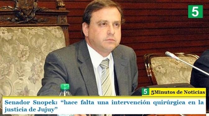 """Senador Snopek: """"hace falta una intervención quirúrgica en la justicia de Jujuy"""""""