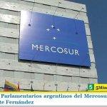 Respaldo de Parlamentarios argentinos del Mercosur al Gobierno del Presidente Fernández