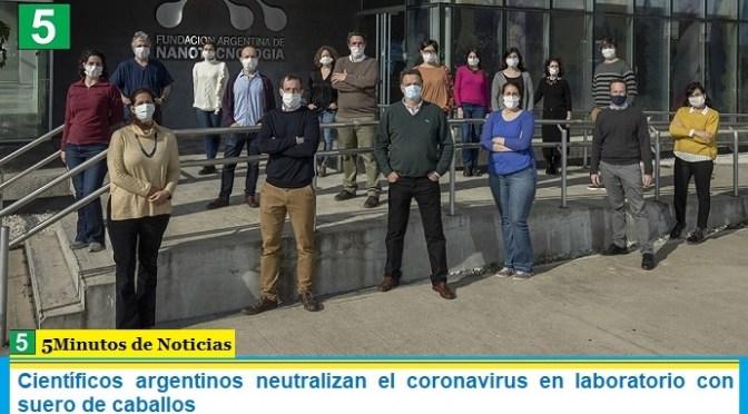 Científicos argentinos neutralizan el coronavirus en laboratorio con suero de caballos