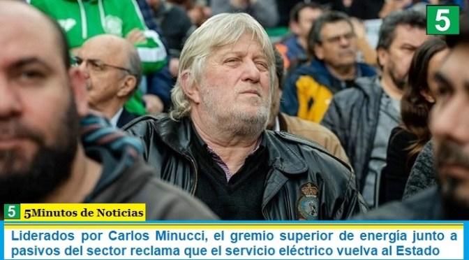 Liderados por Carlos Minucci, el gremio superior de energía junto a pasivos del sector reclama que el servicio eléctrico vuelva al Estado