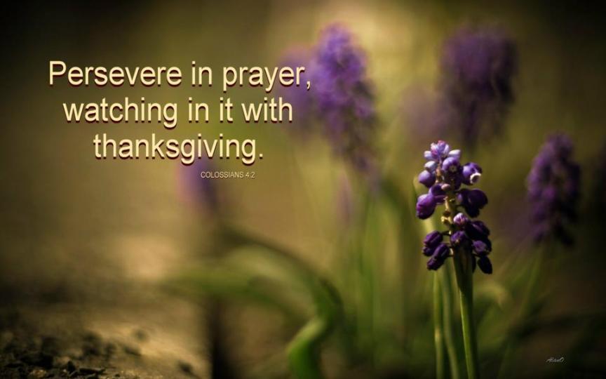 STM Prayer Guide
