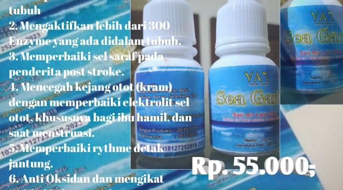 Sea Garin - Nigarin - Sari Air Laut (SAL)