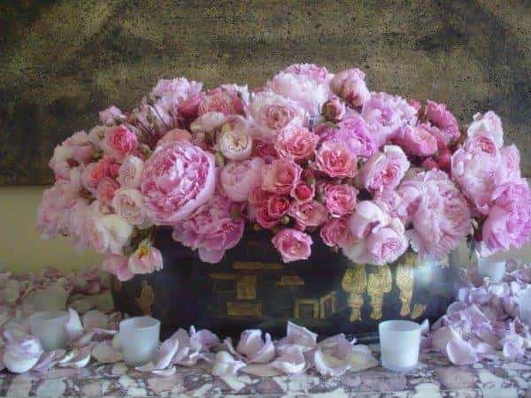 Robbie Honey gives us the low down on the latest floral trends!