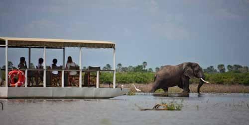 Luxury Honeymoons In Africa