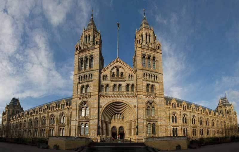 10 Luxury Wedding Venues in London - Natural History Museum, Kensington