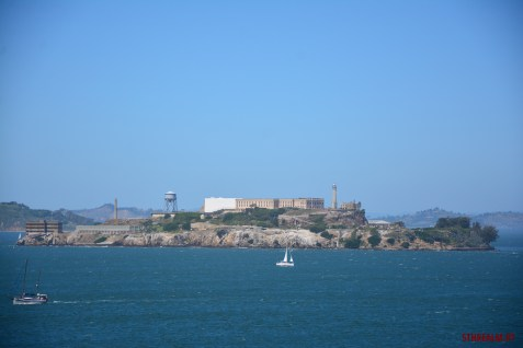 Alcatraz view from Black Point