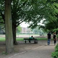Palastgarten Baustelle Foto: Mirna Stieler - 5VIER