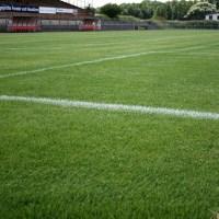 Der neue Rasen erstrahlte im satten Grün - Foto: A.Heinen