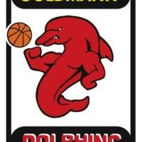 Wappen_Dolphins2012_Final_4c - 5VIER