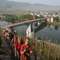 Wandern wo der Wein wächst Foto Ansgar Schmitz 039 - 5VIER