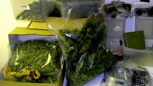 Polizei Cannabis2