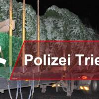 Tannenbaum Titel - 5VIER