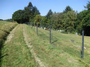 Friedhof Übersicht IMG_1526 (Mittel)