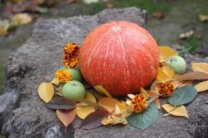 https://pixabay.com/de/pumpkin-herbst-gemüse-schmackhaft-2913961/ - 5VIER