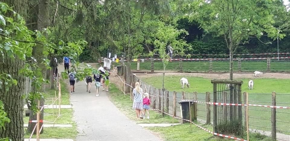 Das Wildgehege Weisshauswald Trier hat wieder geöffnet