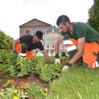 Wenn die Stadt erblüht: StadtGrün bepflanzt Trier