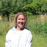 Wespen Bienen Nicole Hennecke