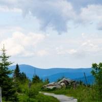 Das Foto zeigt einen Wanderweg in den Bergen in Deutschland. Foto: Jürgen Bierlein from Pixabay