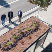 Bus-Wartehallen: Pilotprojekt für grüne Dächer