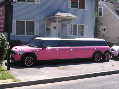 Pink Stretch Mini