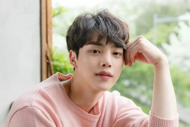 Image result for song kang