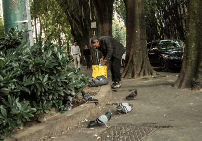 old man and pigeons on a side street in Milan