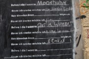 "Before I die, I want to...""find a home"", ""pet a wombat"", ""ride a limo"", ""8 grandkids"""
