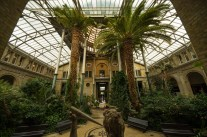 The atrium in COpenhagens NY Carlsberg Glyptotek, built and run by the founder of Carlsberg and of Scandinavias most important museums with huge collection of impressionists.