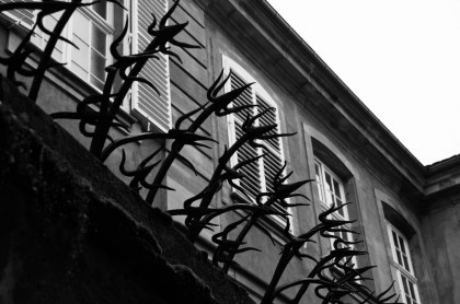 Very fancy ancient barbed wire in Strasbourg