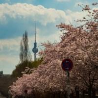 Spring in Berlin  - a love letter