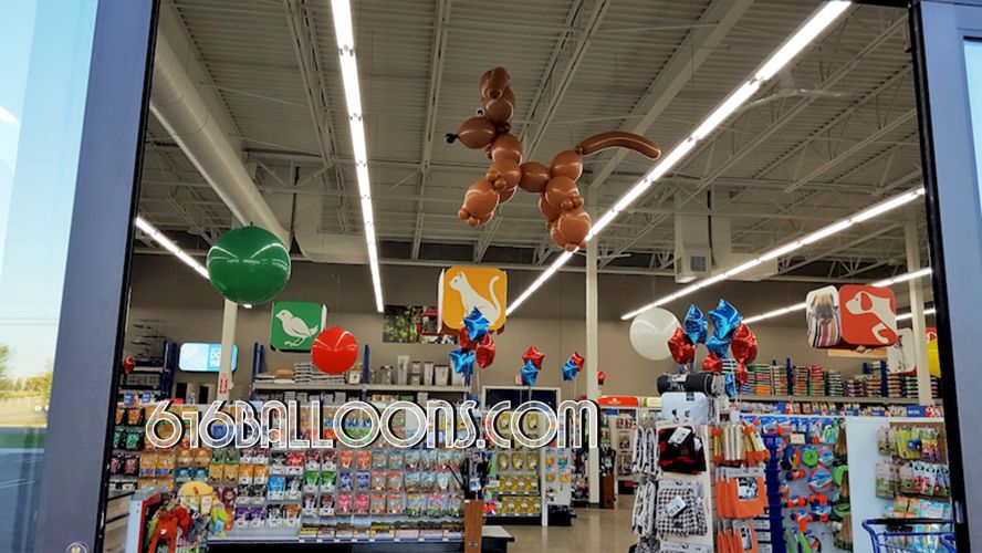 Giant poodle for Chow Hound Pet Supplies Grand Opening event 616Balloons.com Grand Rapids, Mi. Premium balloon art & decor. Corporate events, private parties..