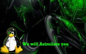 Wallpaper-asimilate-you